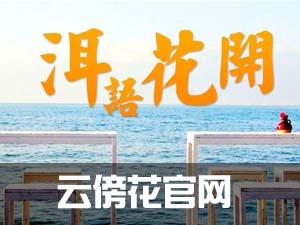 云傍花官网-民宿第一品牌